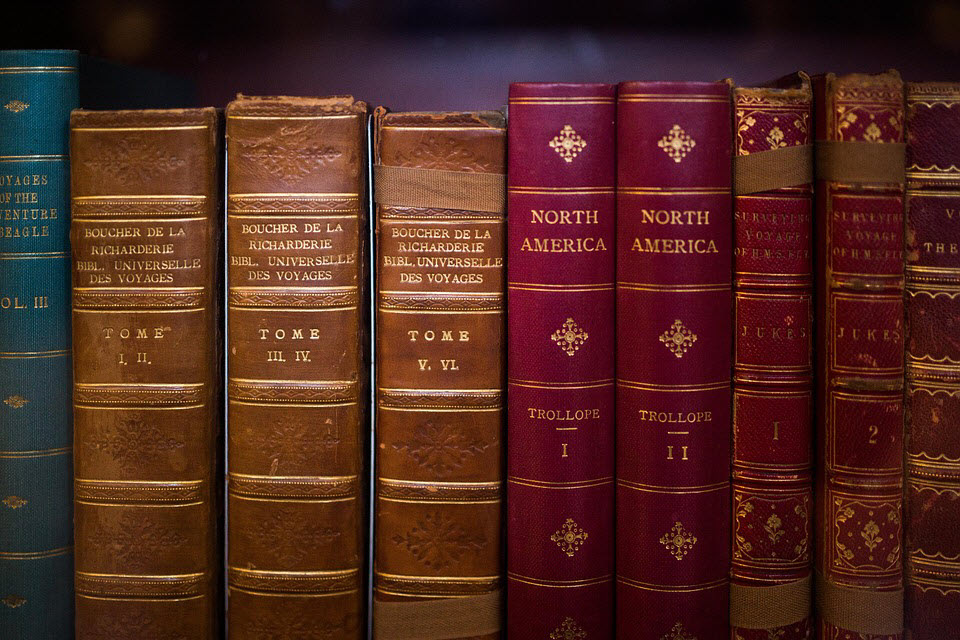 3 Reasons Why Studying History is Valuable (and Fun… Seriously, It Can Be Fun!)