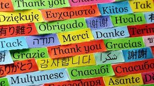 4 MUST-HAVES for Foreign Language Success