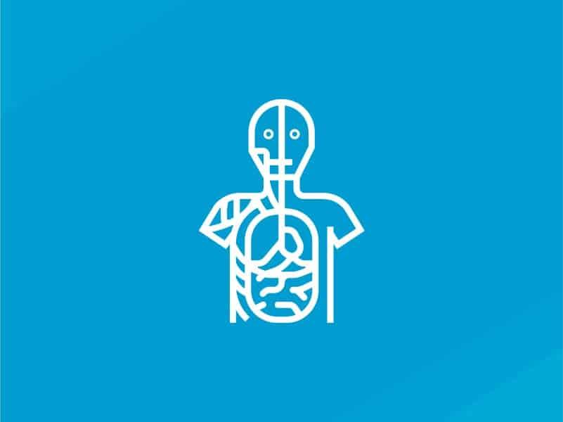 Human Anatomy & Physiology – CLOSED
