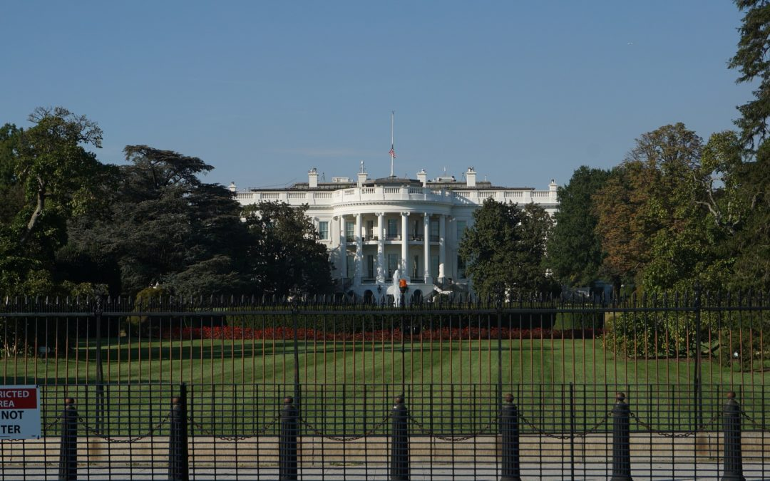 What is an Executive Order and What Does it Do?